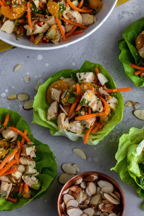 Chinese Chicken Salad- Dash Of Mandi