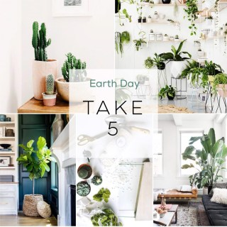 Take 5 - Earth Day Edition