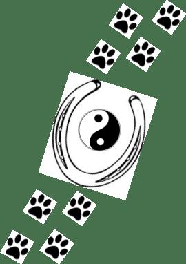 Tierkinesiologie und Tiertherapie Page 2.