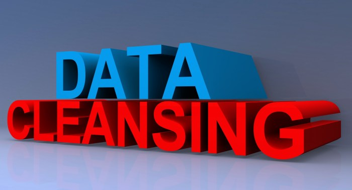 Data Cleansing