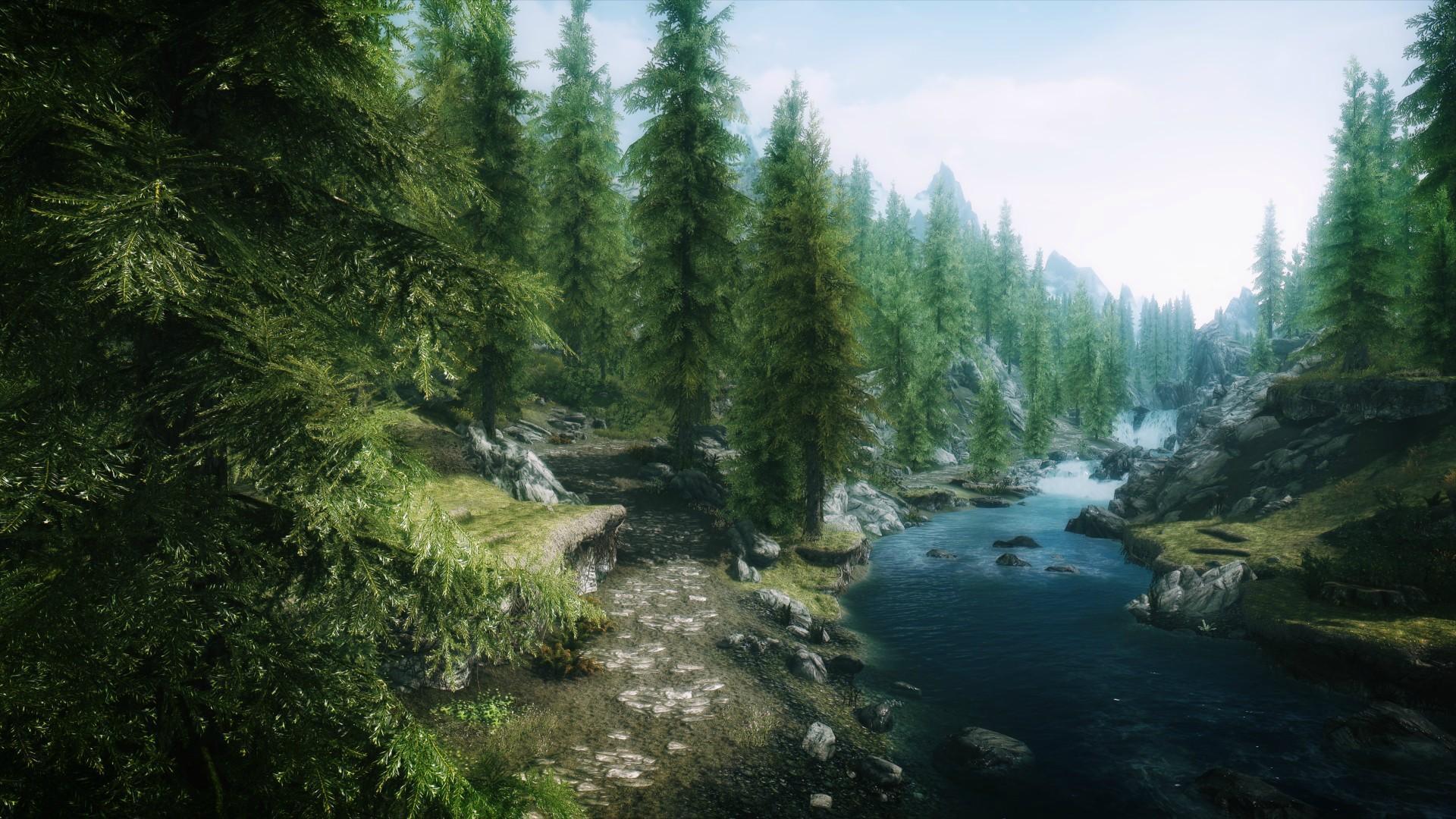 Skyrim Animated Wallpaper Skyrimの:森のhdデスクトップの壁紙:ワイドスクリーン:高精細:フルスクリーン