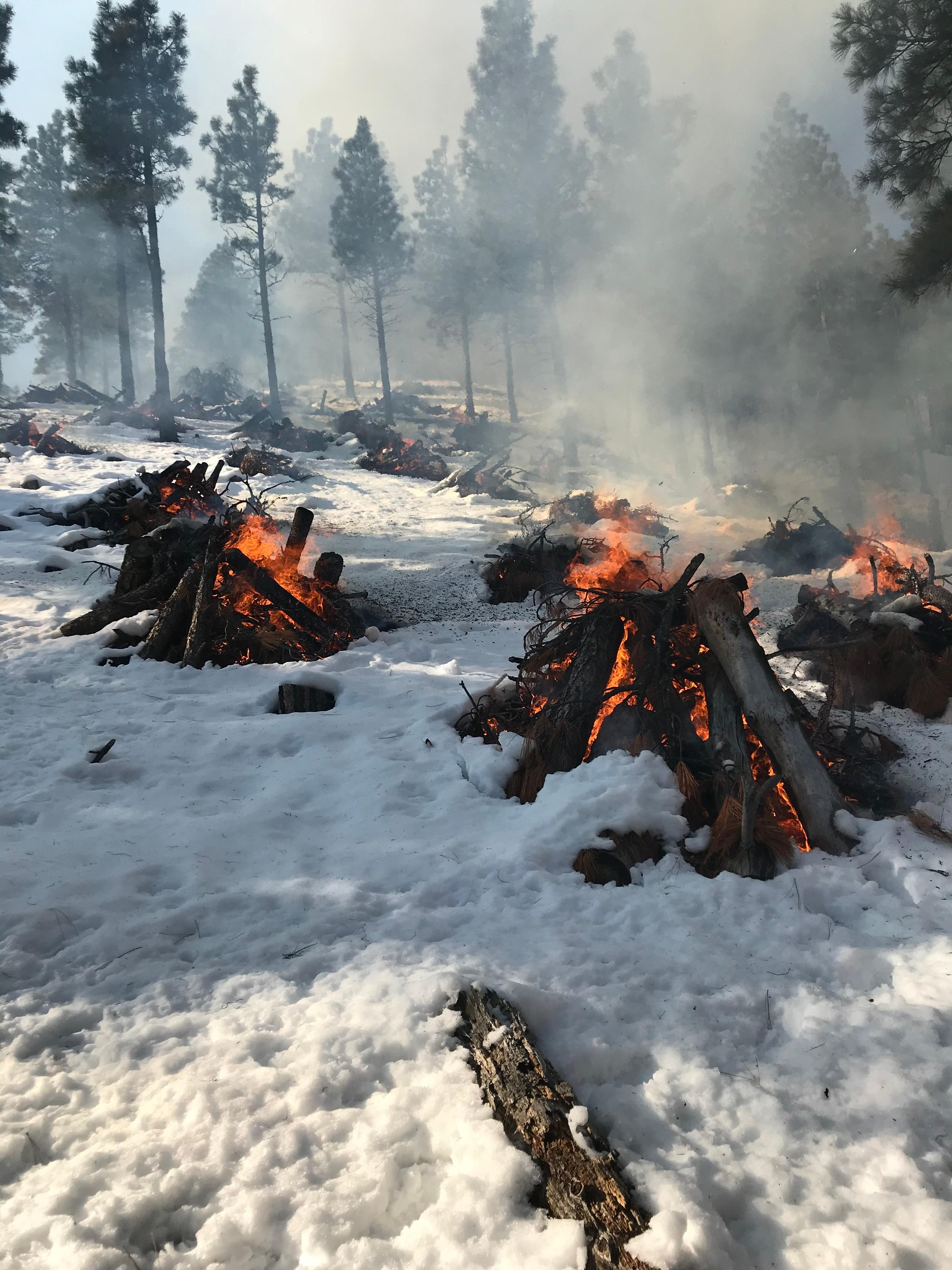 May be an image of map and text that says 'fire weather watch what:. Genoa Pile Burn Photo By Mike Morello 2021 Humboldt Toiyabe Prescribed Fire Wildfire And Smoke Map Democratandchronicle Com