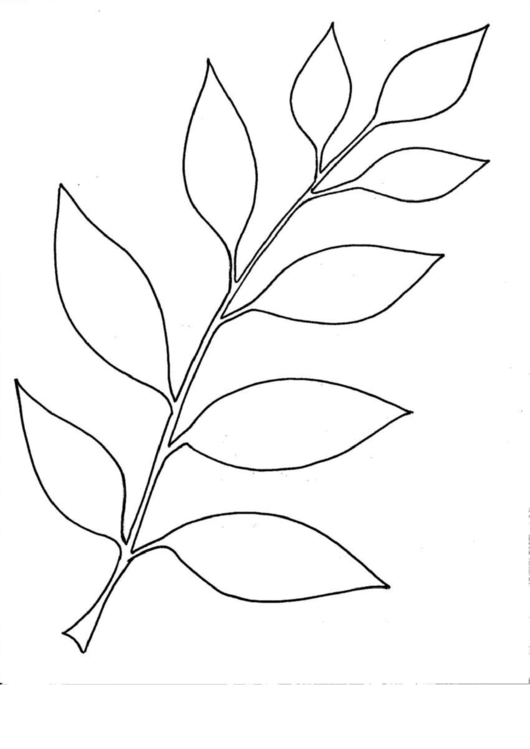 Top Simple Leaf Templates free to download in PDF format