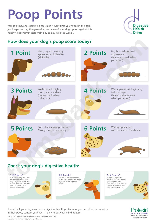 Dog Poop Chart printable pdf download