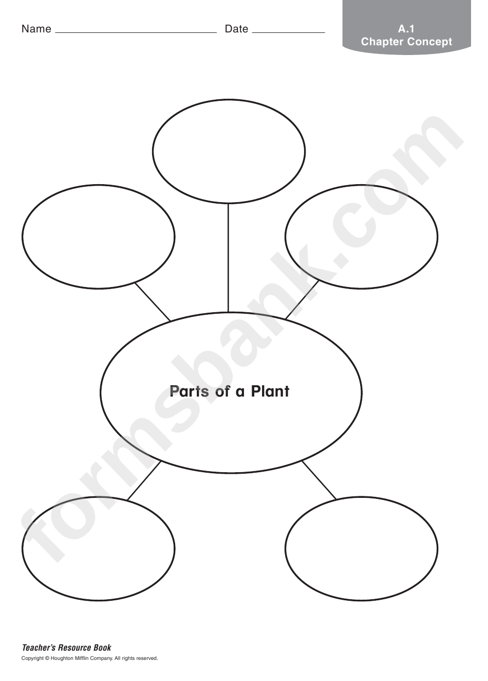 Parts Of A Plant Biology Worksheet printable pdf download