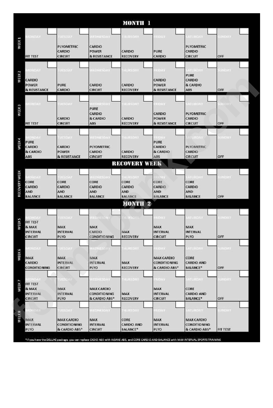Insanity Workout Schedule Printable Pdf Download