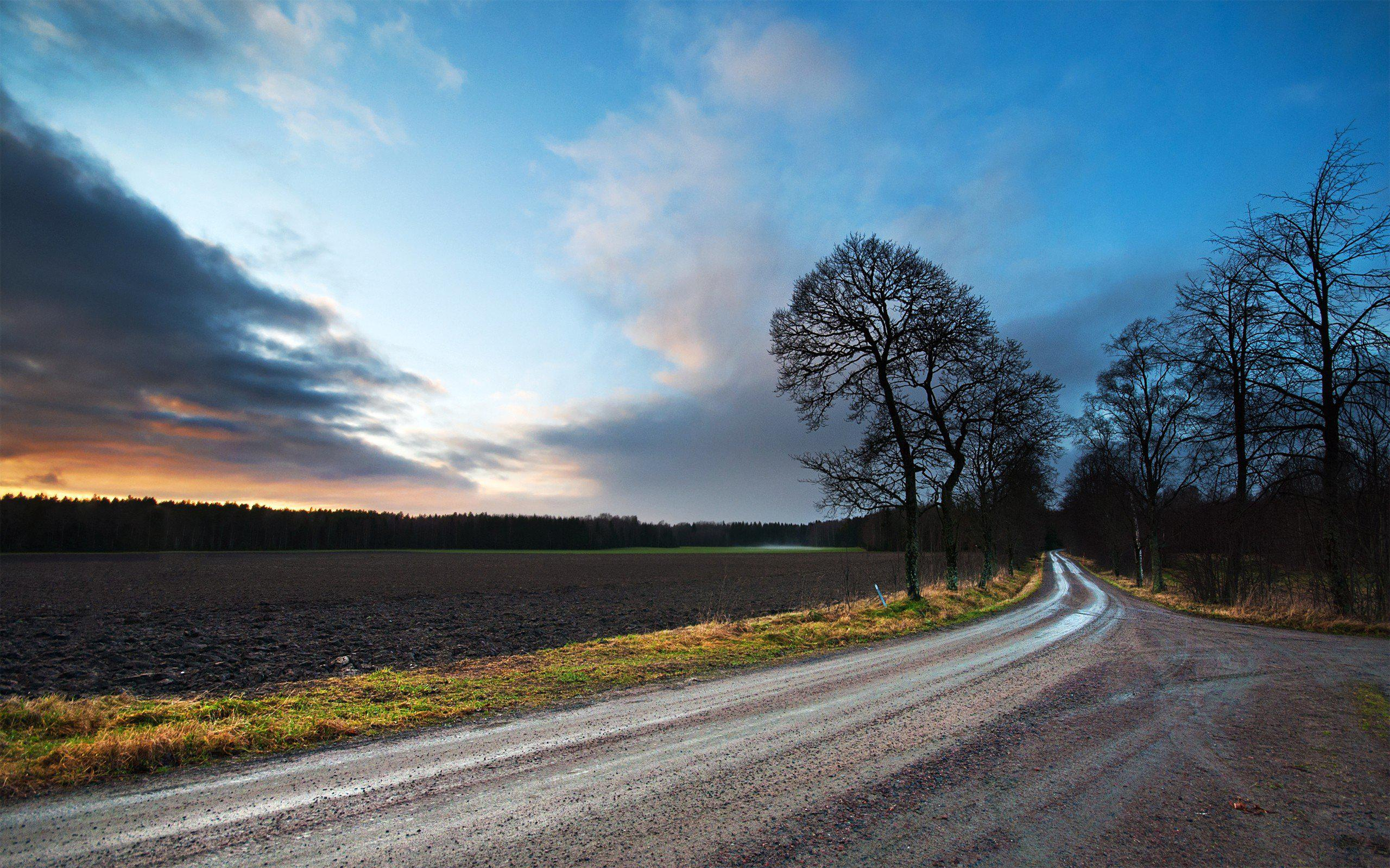 Happy New Year Hd Wallpaper 2014 Hd Landscapes Nature Fields Roads High Quality Wallpaper