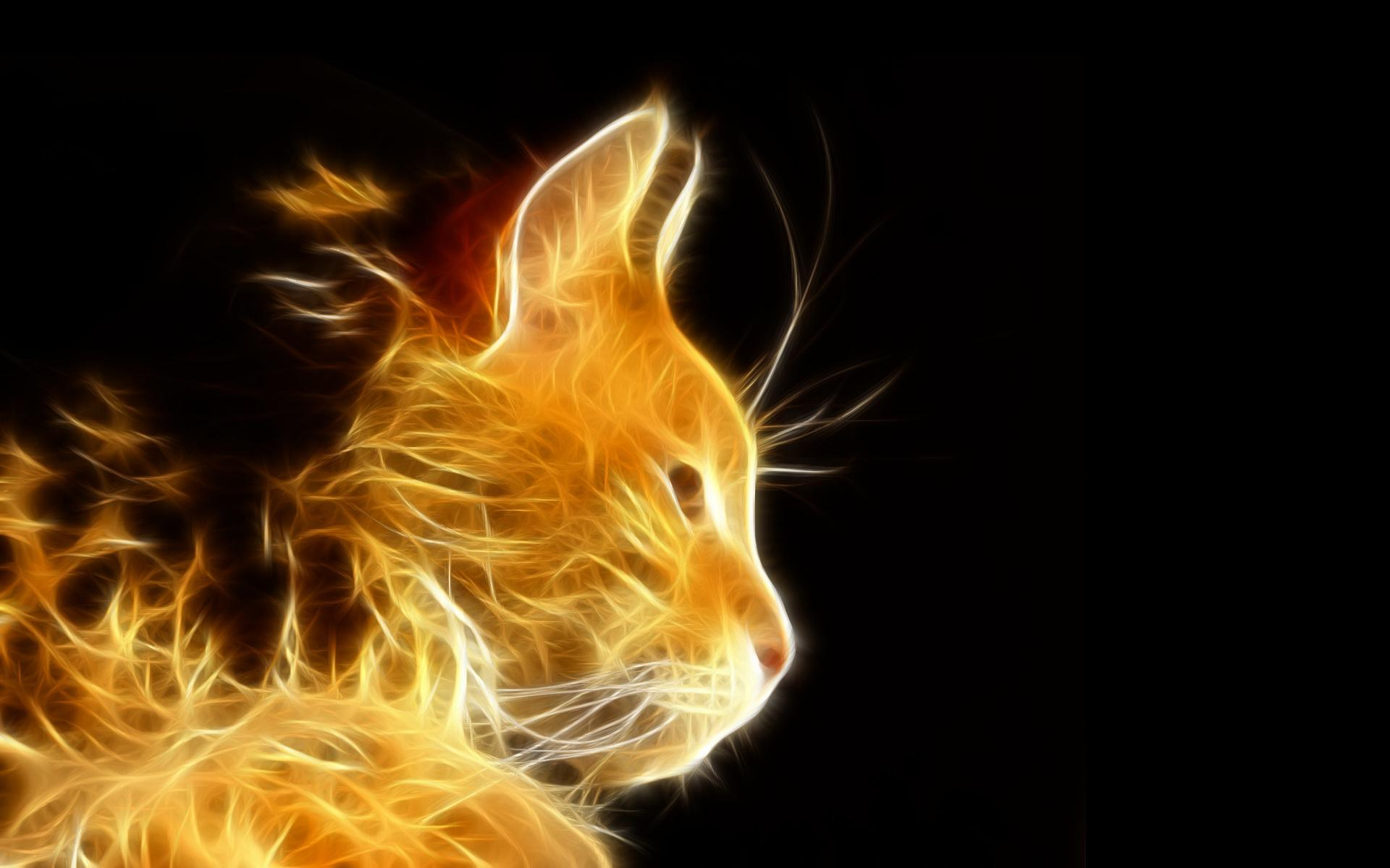 Cute Background Wallpaper For Computer Christmas Lights Animal Hd Hd Photoshop Light Rays Cat Cats Fractal Photo Download