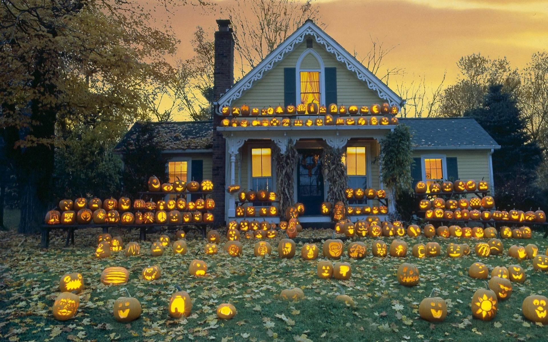 Fall Path Wallpaper Hd Pumpkin Patch Halloween Autumn Wallpaper Download