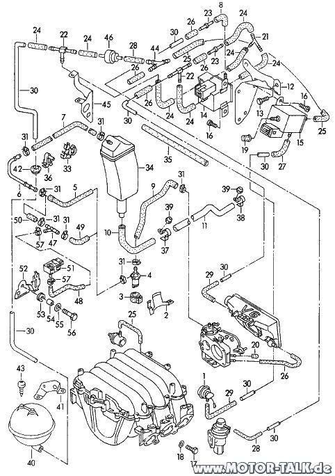 Schlaeuche-a6-v6 : Unterdruckschläuche : Audi A6 4A