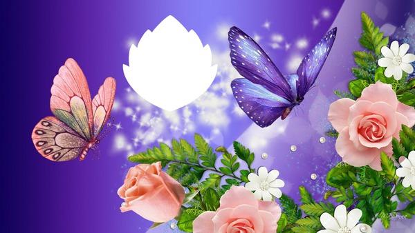 Cute Wallpapers Of Roses Fotomontagem Rosas E Borboletas Pixiz