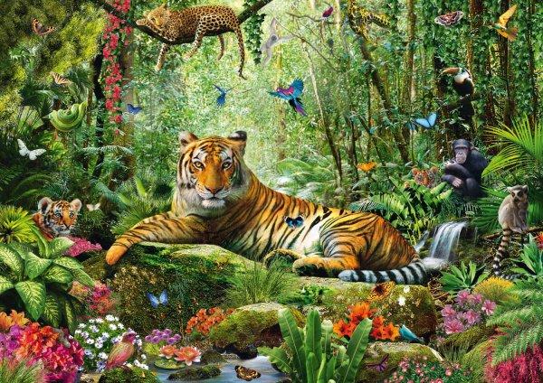 Jigsaw Puzzle Jungle Tigers