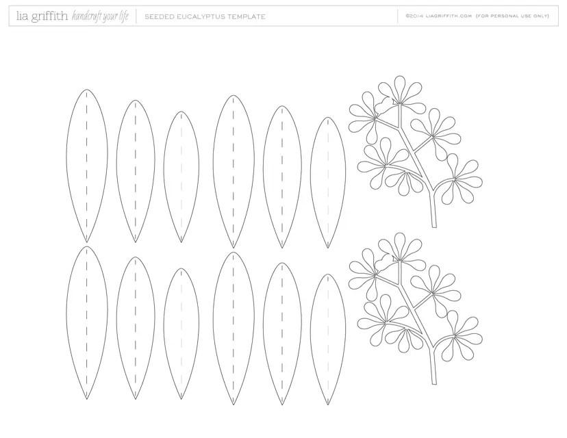 Seeded Eucalyptus Leaf Template Download Printable PDF