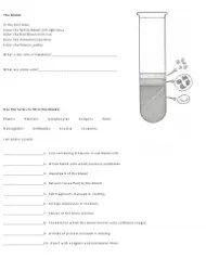 Blood Drawing and Coloring Biology Worksheet Download