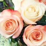 Image About Love In Fabulous Flowers By Diplomatic Diva
