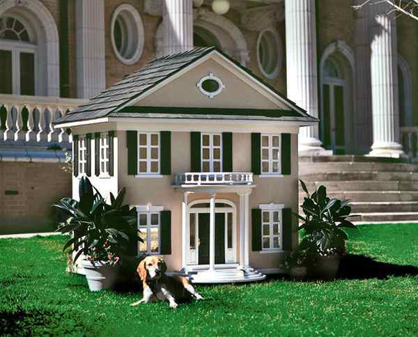 Expensive Dog House With Gray Roof