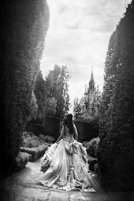 Cinderella-black-and-white-bw-garden-castle-trees-dress_large