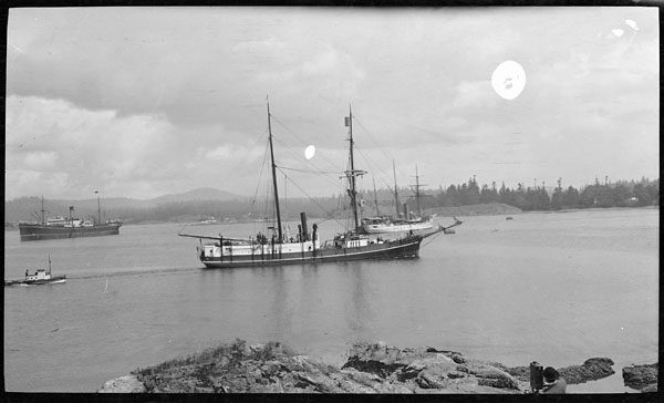 The Karluk sails near Esquimalt Harbour.