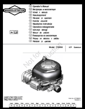 Briggs & Stratton 310000 VERTICAL SERIES Manuals