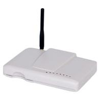 Dual Band CDMA Fixed Wireless Terminal