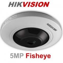 Hikvision DS-2CD2955FWD-I 5MP Network Fisheye Camera