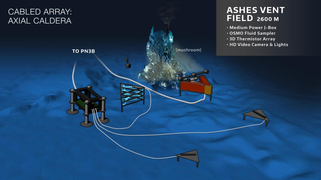 Schematic of the configuration of instruments and the Medium-Power Junction Box at the ASHES Vent Field site on the Axial Seamount. Credit: OOI Cabled Array program & the Center for Environmental Visualization, University of Washington