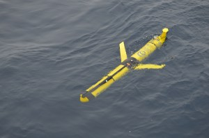 A yellow Glider in surface water