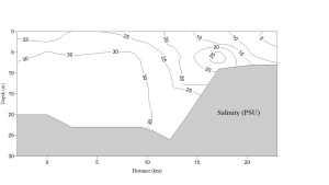 salinity data shown with contour lines