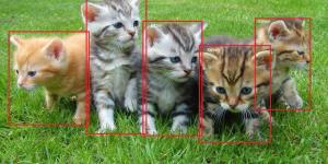 object-detection-tensorflow