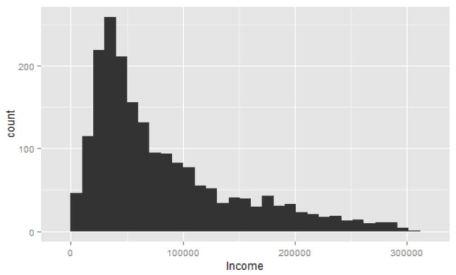 02_income_p99.JPG