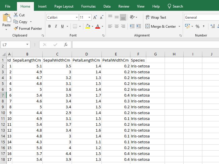 Iris dataset snapshot in Excel