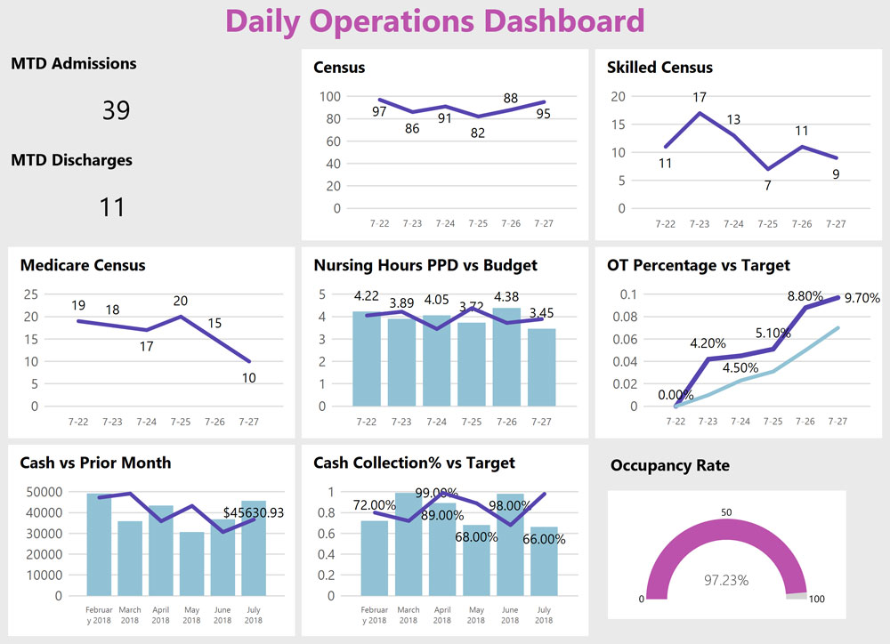 DataServicesPartners.com Daily Operations Dashboard Sample image