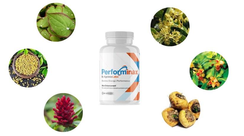 Performinax Male Enhancement Ingredients