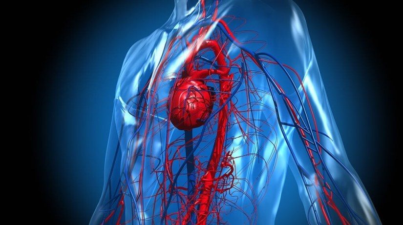 Underlying Side Effects Of Moderna - Heart Inflammation
