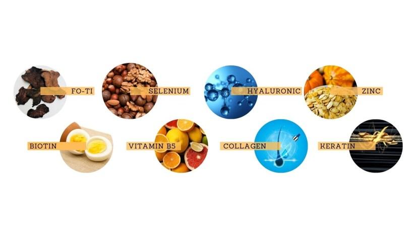 Ingredients of Folifort