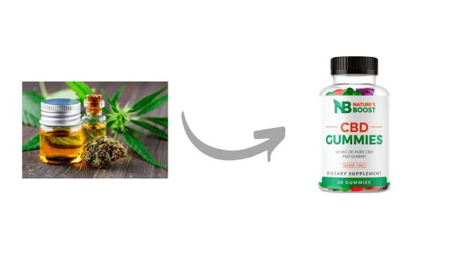 Nature's Boost CBD Gummies Ingredients