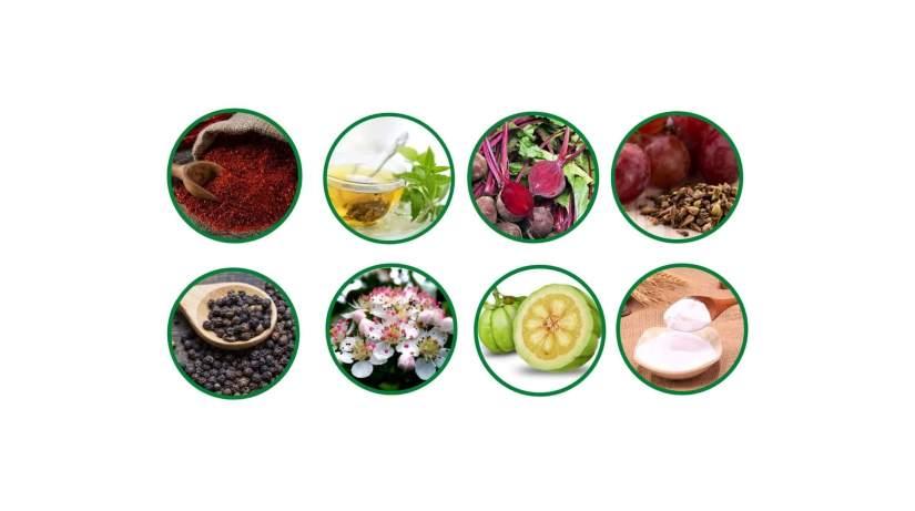 NitriLean supplements ingredients