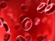 New Drug Targets The Long-Term Effective Treatment For Vascular Inflammation