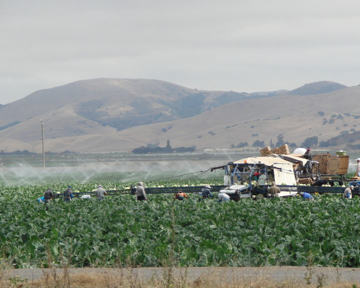 Free workshops for farm labor contractor licensing