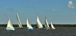 Sailing Race June 1st