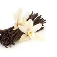 Tại sao Vanilla lại trở thành loại gia vị đắt thứ hai trên thế giới?