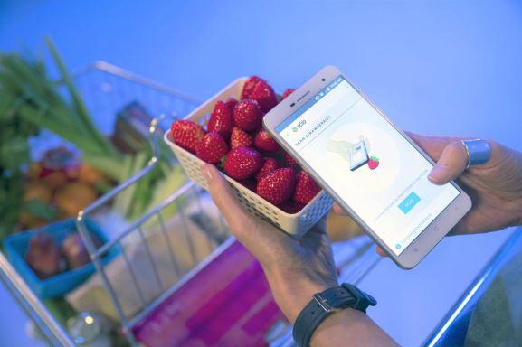 Der Molekularscanner bestimmt den Reifegrad von Erdbeeren. Bild: Changhong