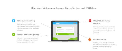 Duolingo Vietnamese Lessons