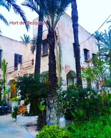 Hort de Mezquita