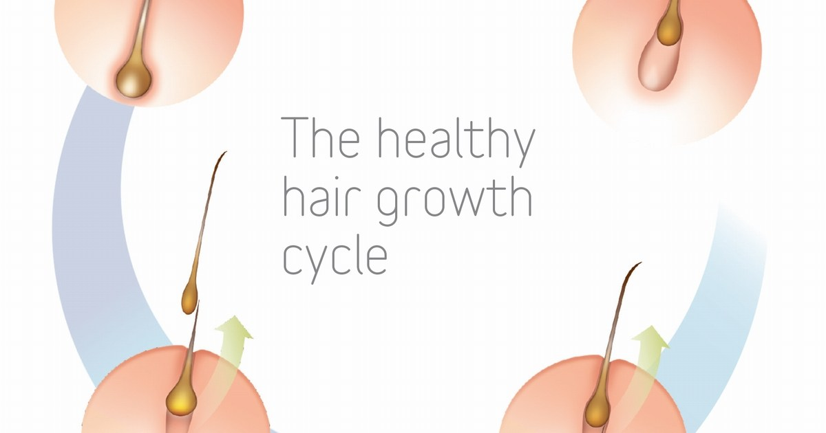 haircycle_thumbnail