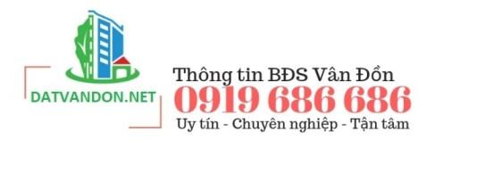 datvandon.net