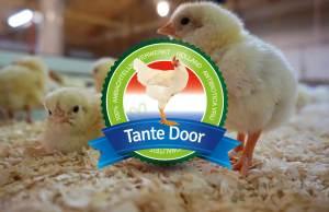 Tante Door