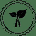 Plantaardige-voeding