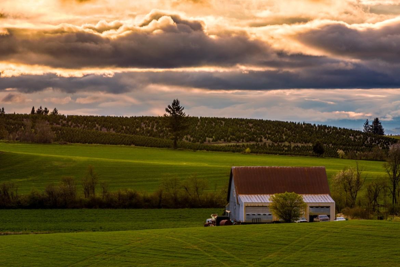 An Oregon Farm