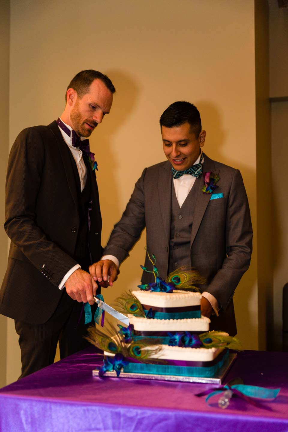 Grooms cutting the wedding cake
